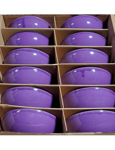 CB6 Purple Bowls